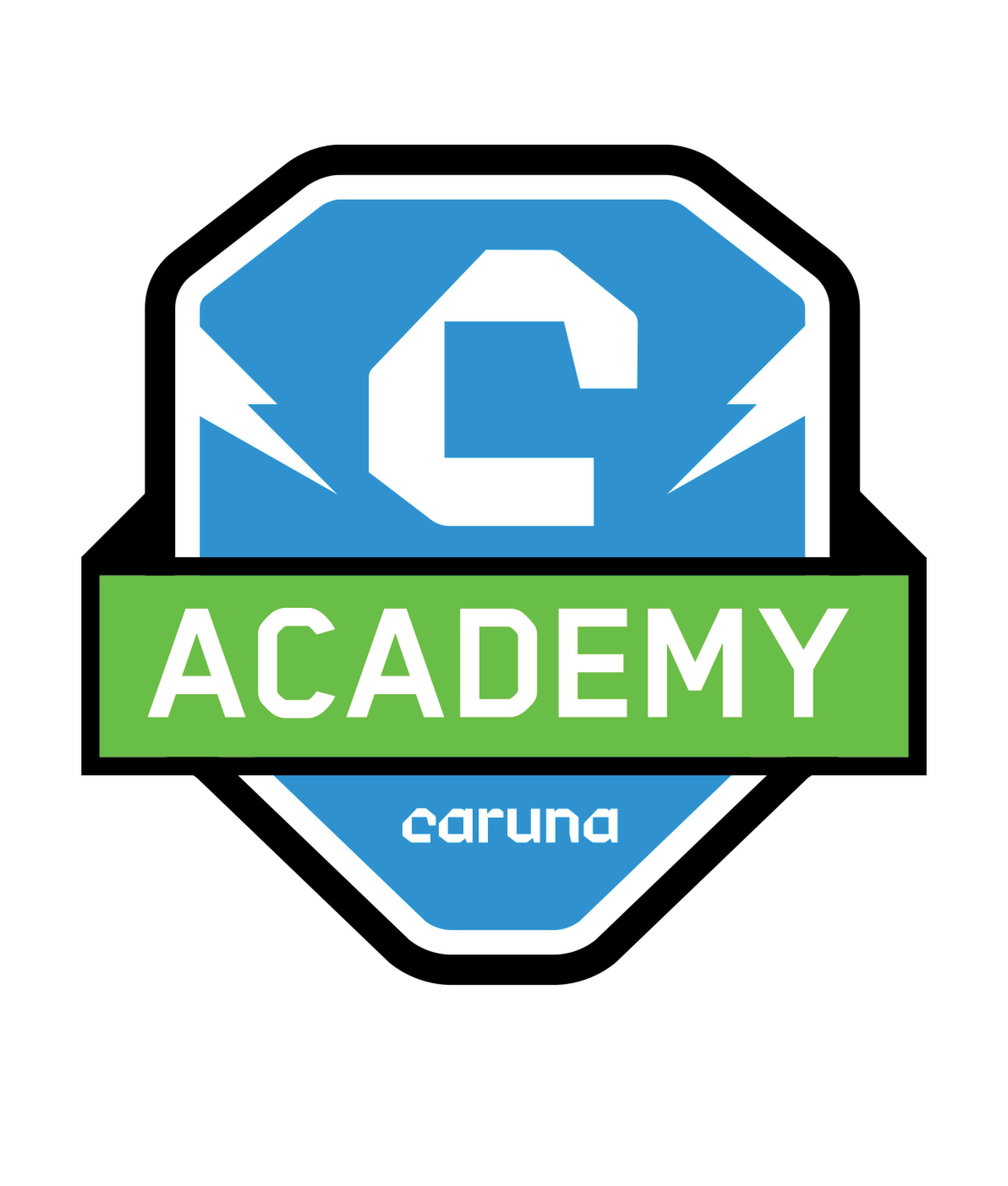 caruna-academy-sivusto-logo (1)